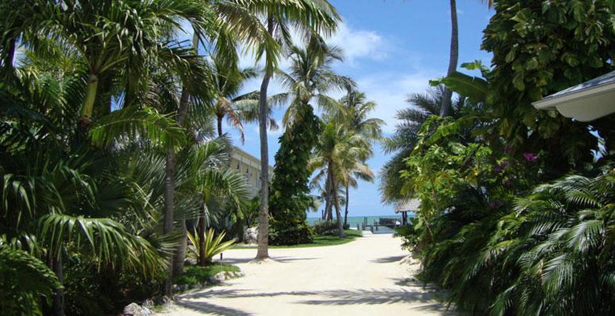caribbean rental and vacation homes  islamorada florida houses for rent 33036